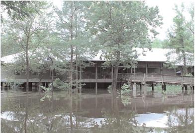 Delta Rivers Nature Center still recovering from flood