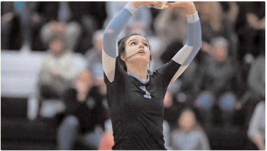 Arkansas Volleyball: 'New Hog on the Block'